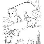 perfect polar bear and his cute littleones coloring sheets