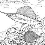 pretty awesome coral reefs coloring sheet
