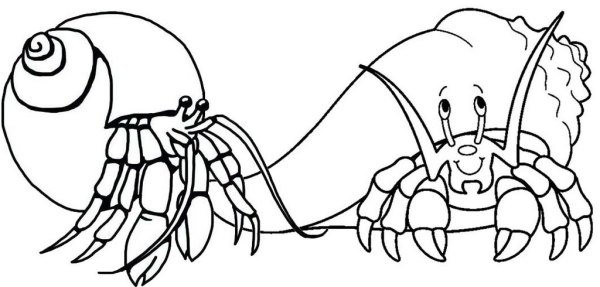 hermit crab coloring page # 24