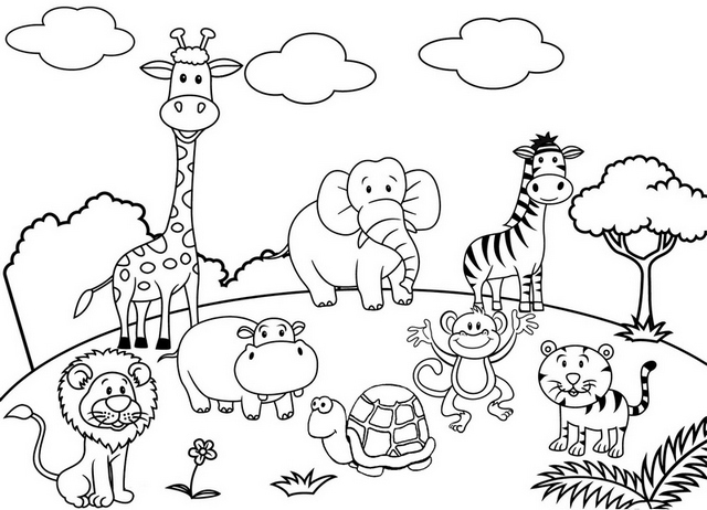 cute cartoon animal set zoo coloring and drawing page   colouring pages for zoo animals