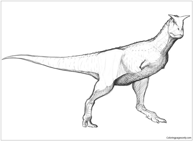 Carnotaurus Sastrei Coloring Pages - Dinosaurs Coloring Pages
