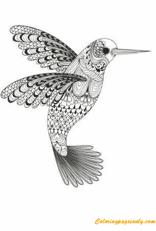 Beauty Of Hummingbird Coloring Page Free Coloring Pages Online