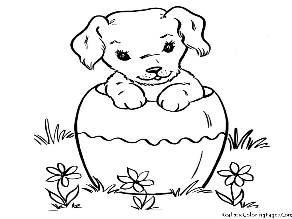Baby Cartoon Color Cute Pugs