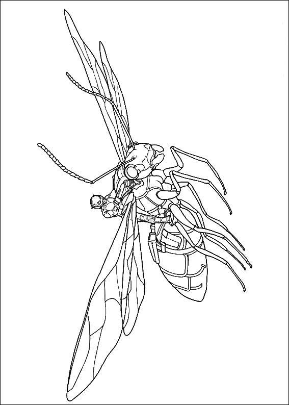 Disfruta de la mayor coleccion de dibujos para colorear, descargar o imprimir. Ant-Man coloring pages to download and print for free