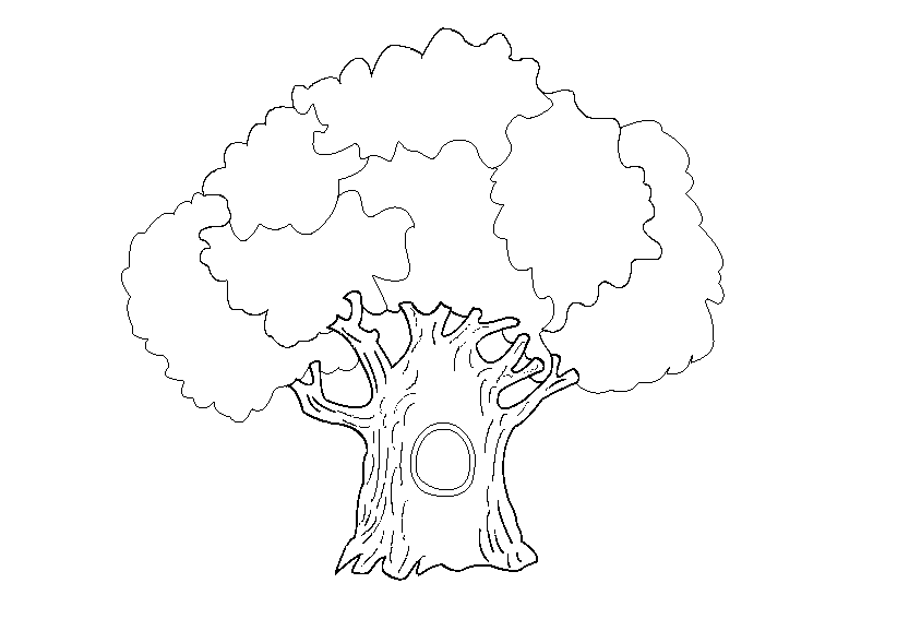 Oak Coloring Pages To Download And Print For Free