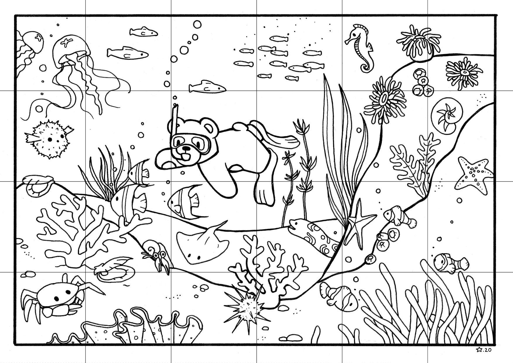 Illustration : coloriage de petit nours qui faire d ela plongée ; découpé en puzzle