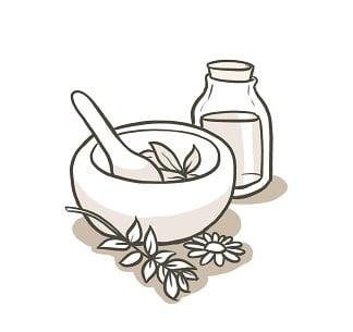 illustration : naturopathie éléments dessinés