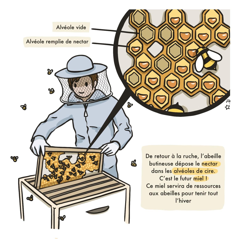 Les_Abeilles_P4