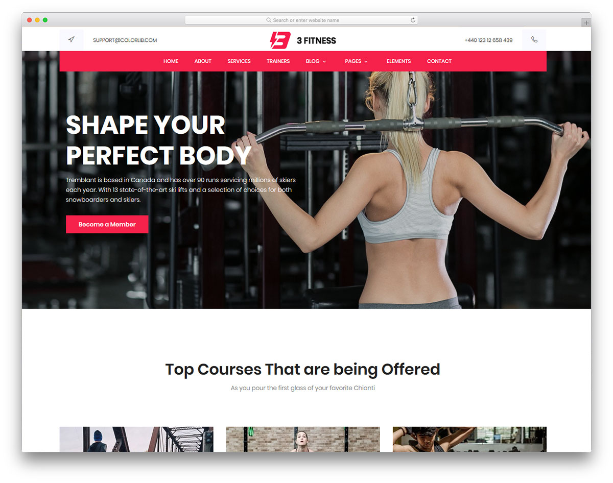 Fitness Free Template
