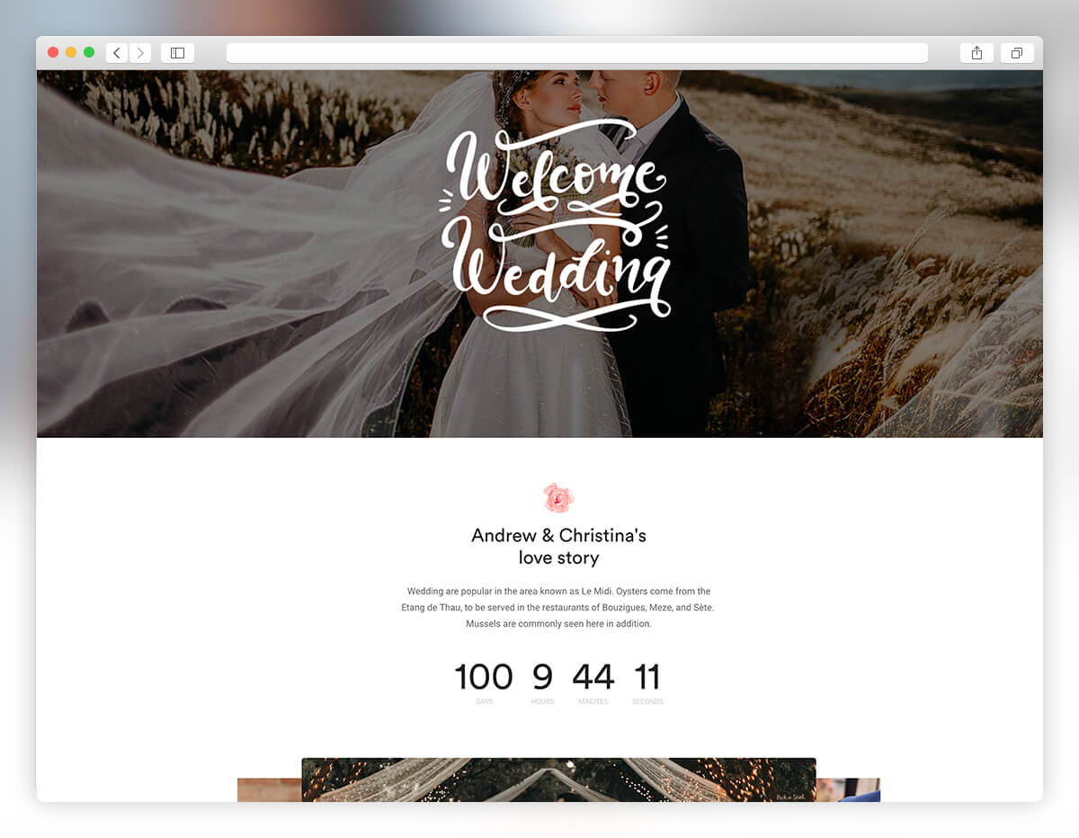 Most couples still send out fancy paper invitations, but even so, it's now popular to direct people to a website for more information and to rsvp. 27 Best WordPress Wedding Themes 2021 Colorlib