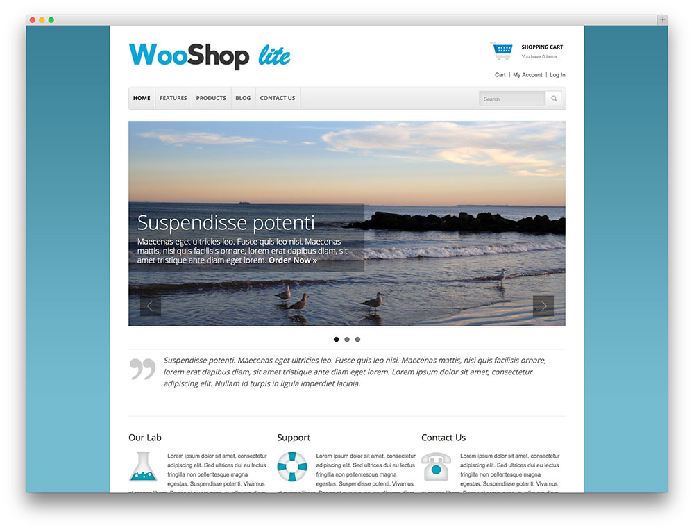 template wooshop