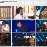 [Vid] 120408 CNBLUE Cut @ KBS Gag Concert [Eng Subs]