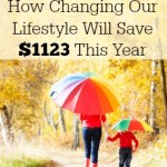 How Changing our Lifestyle Will Save $1123 This Year