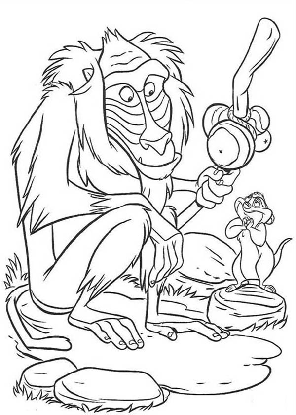 Cartoon Baboon Monkey Coloring Page Download Amp Print