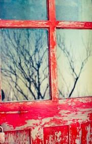 Reflections on a door, Kasauli