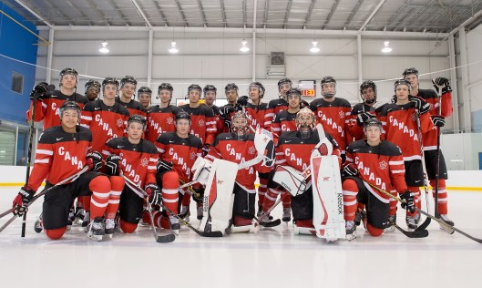 Canada's 2015 IIHF World Junior team. Defenseman Madison Bowey, front row left. Forward Anthony Duclair, back row left, and defenseman Darnell Nurse, back row center (Hockey Canada Images/Matthew Murnaghan)