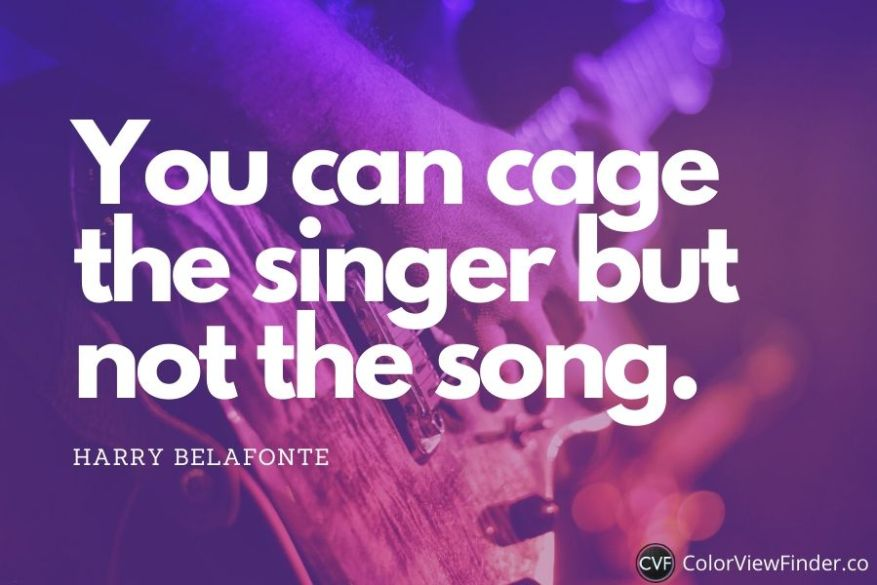 Short Music Quote - You can cage the singer but not the song