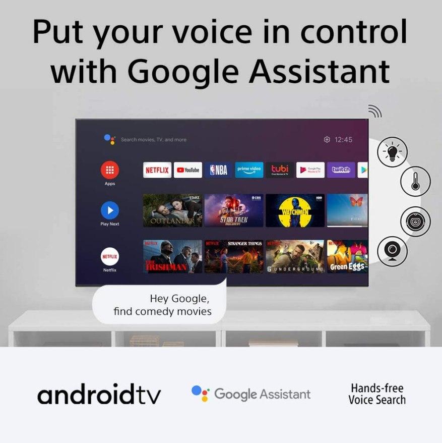 Voice Control Google Assistant