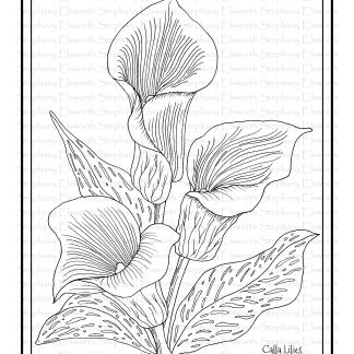 Calla Lilies Coloring Page