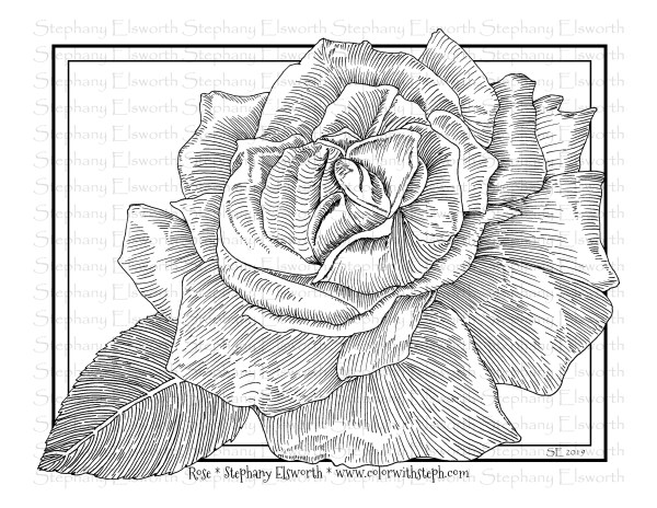 Rose and Leaf Coloring Page