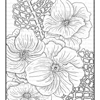 Primrose Flowers Free Coloring Page