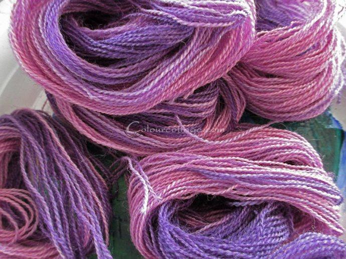 purple03