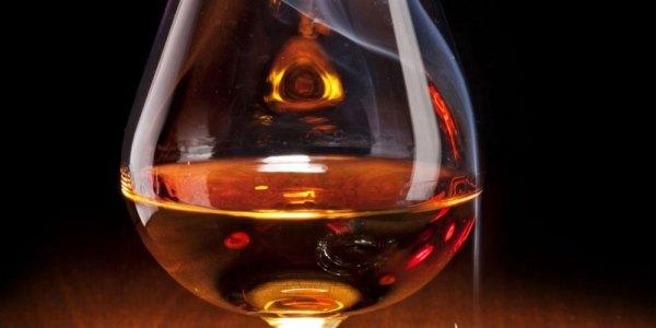 Brandy-brown-CCN