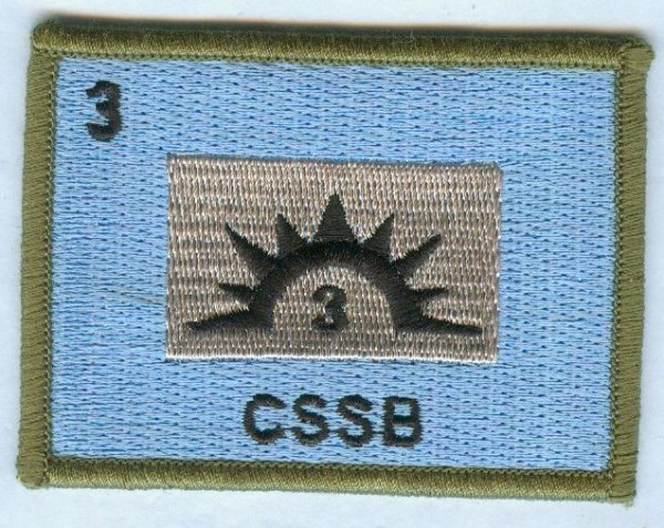 3rd Combat Support Services Battalion