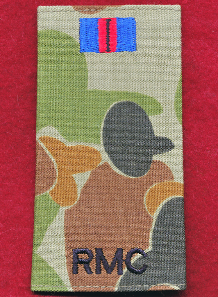 PTE Rank Slide - RMC  (DPCU)