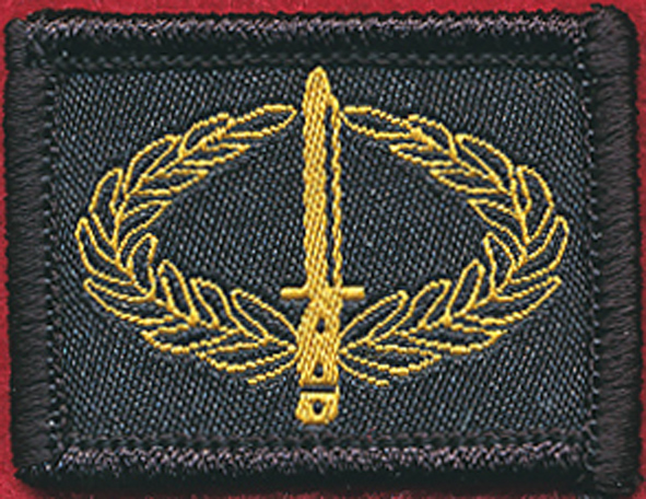ICB - Infantry Combat Badge (Woven)
