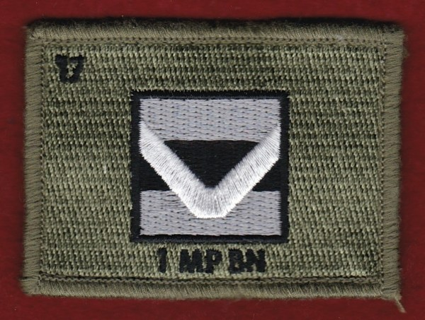 1st Close Health Support Battalion