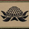 BG WARATAH - (5 Bde and 8 Bde)