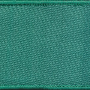 Course Colour Patch - IET (RAA)  (Green)