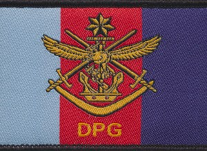 Defence People Group Patch (Air Force)