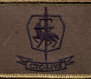 Combat Training Centre Live Sleeve patch (Field)