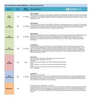 Exempel på träningsprogram för Ironman Colting Borssén Coaching Triathlon Coaching