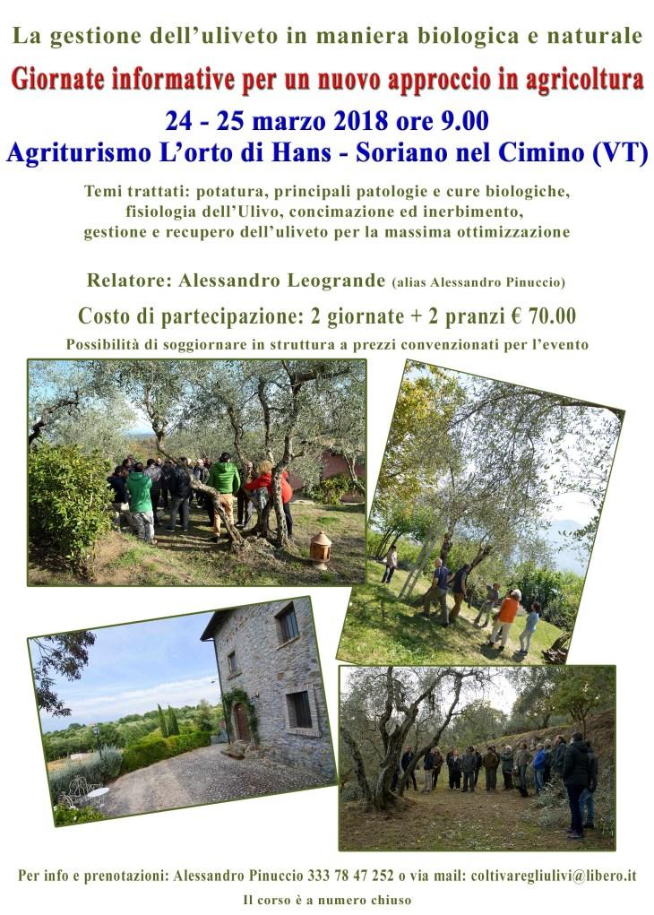 locandina corso Soriano nel Cimino (VT)