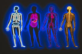 Chiropractic is Scientific