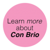 conbrio-button-08