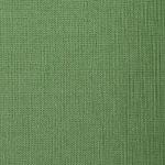 Shantung 2534