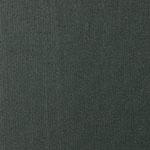 Shantung 2538