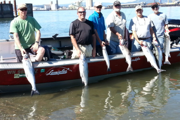 Columbia River fishing guides catch limits of fall chinook !