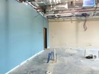 STEM Interior Paint