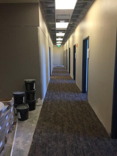 AH Corridor Carpet