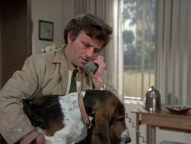 Columbo Dog Mayhem