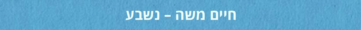 modulation-israeli-haim-01