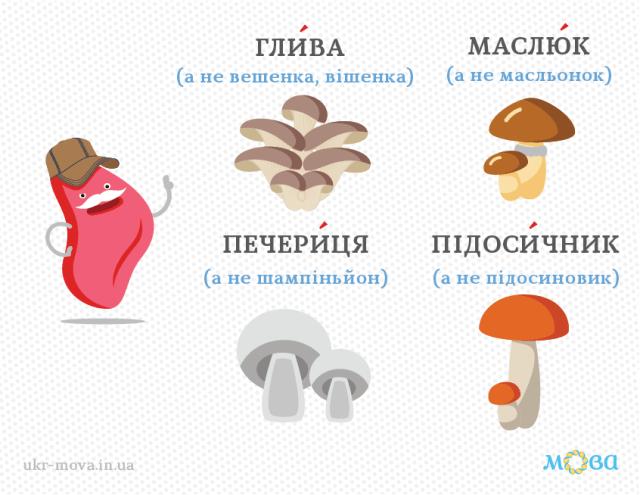 гриби_українською_мовою