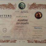 Diploma Allenatore Systema