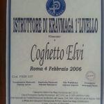 Diploma Istruttore 1° Livello Krav Maga