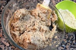 Gnocchis de castaña con su salsa de ceps (15)
